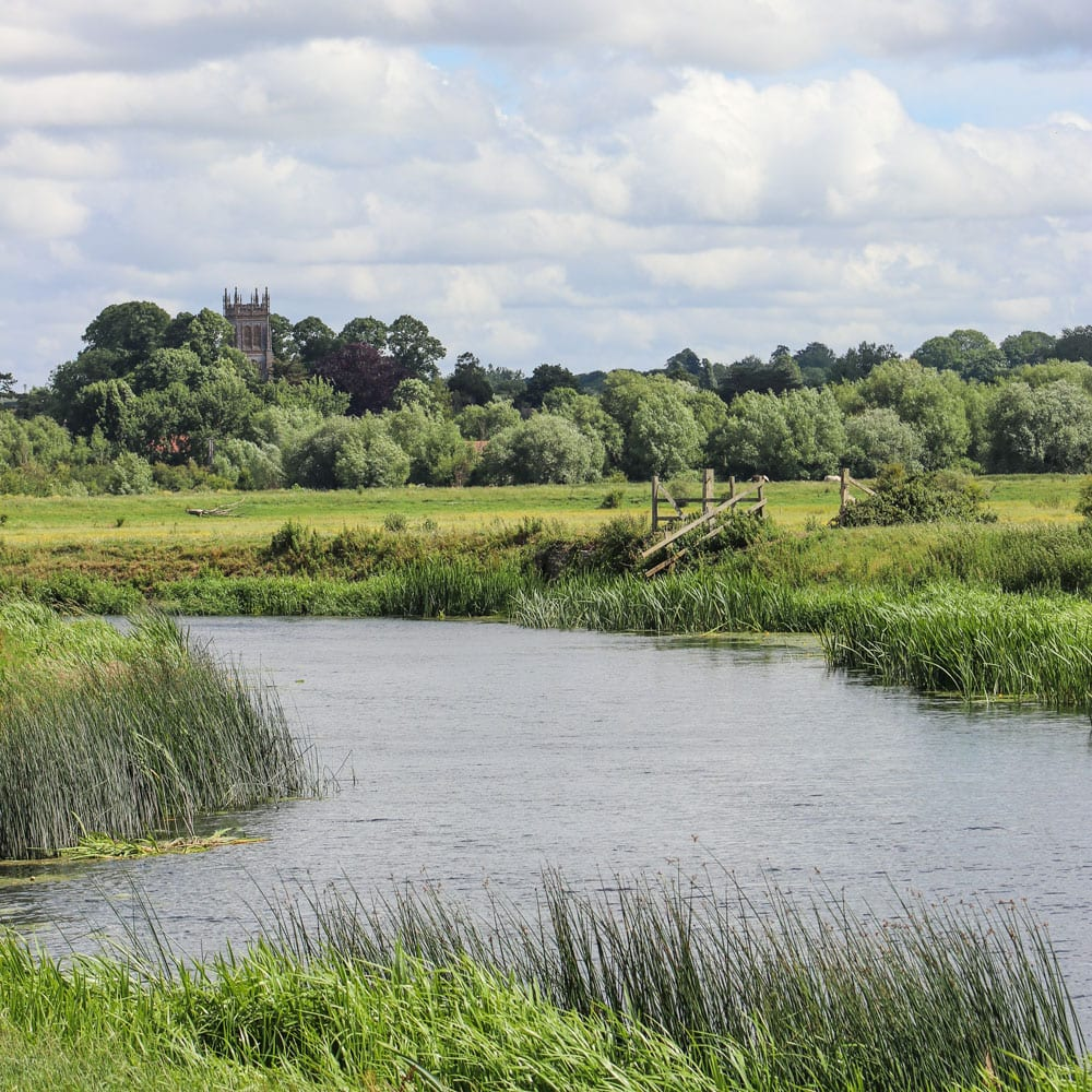 Explore the River Parrett at Thorney Country Cottages